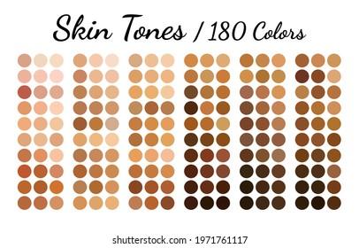 Collection Color palette, Skin tones. Flat vector illustration.