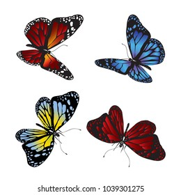Collection of colorful butterflies. Vector