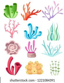 Collection of colorful corals and seaweed. Deep sea floral design. Ocean flora and fauna. Flat vector illustration isolated on white background.