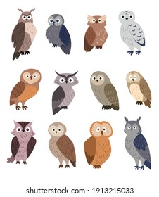 Collection of cute cartoon Owls. Set of flat vector illustrations isolated on white background