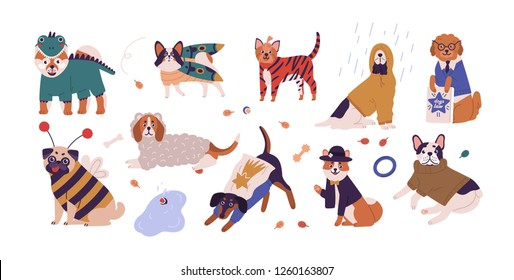 Collection of cute dogs of different breeds wearing funny costumes. Set of amusing cartoon domestic animals dressed in various clothing isolated on white background. Vector illustration in flat style.