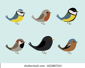 A collection of cute songbirds illustration