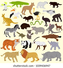 Collection of different animals on a light background