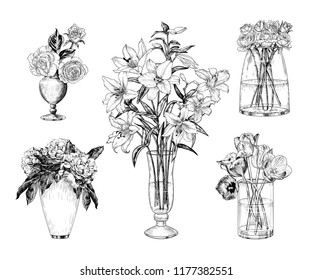 A collection of different bouquets in vases. Roses, tulips, peonies and lilies.  Hand-drawn vector illustration of a sketch style.  Isolated interior elements. Vintage floral composition.