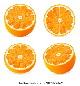 Collection of different orange slice. Vector illustration for decorative poster, emblem natural product, farmers market. Perfect for packaging design of cosmetics and food.