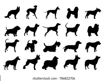 collection of dogs silhouette.Silhouette of the Dog.illustration with set of dogs isolated on white background. dog isolated on white.