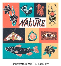 Collection of elements of nature. Set of icons with plants, animals, insects, executed in retro style