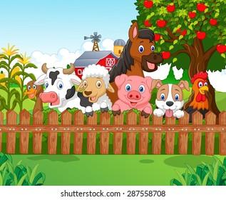 Collection farm animals