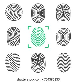 Collection of fingerprints, colorless images of prints of human and colorful one in frame, items on vector illustration isolated on white background