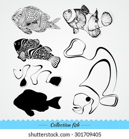 Collection of fish: mark, spot, line, pattern, detailed. Vector illustration.