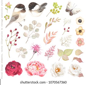 Collection floral design elements with birds Black-capped Chickadee, flowers Roses, Peony, flying butterfly, berries, branches and leaves. Vector illustration in vintage watercolor style.