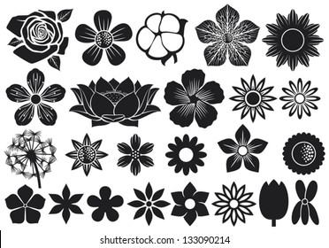 collection of flowers (lotus, dandelion, cherry blossom, rose, cotton, tulip, violet, hibiscus)