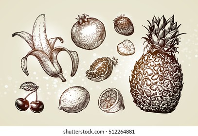 Collection food sketch. Hand drawn fruits such as banana, pomegranate, strawberry, lemon, cherry, pineapple. Vector illustration