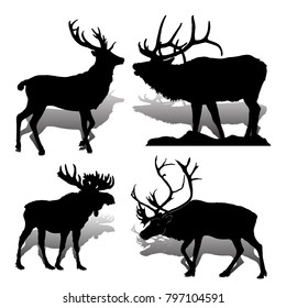Collection Forest animals (mammals) Deer and moose, on white background, vector