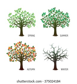 Collection of Four Season Trees. Vector Illustration.