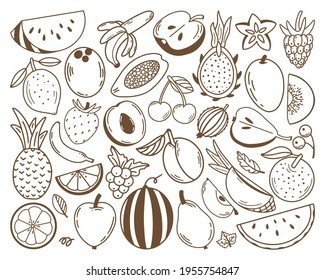 Collection of fresh fruits and berries. Healthy and beneficial product. Gardening or horticulture concept. Design elements for print, packaging or stickers. Flat vector illustration. Sketch design.
