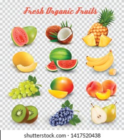 Collection of fruit and berries. Watermelon, honeydew, guava, coconut, pineapple, grapes, mango, peach, pear, banana, kiwi. Vector Set.