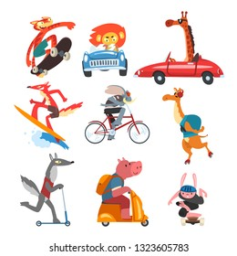 Collection of Funny Animal Characters Using Various Types of Vehicles, Cat, Lion, Giraffe, Rabbit, Camel, Wolf, Pig, with Cars, Skateboards, Kick Scooters, Surfboard Vector Illustration