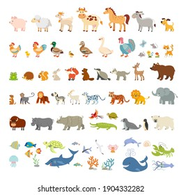 Collection of funny wild animals of the world and ocean. Zoo. Mammals, birds, reptiles and fish of tropical countries, North America, Eurasia and the Arctic. Domestic animals and poultry.