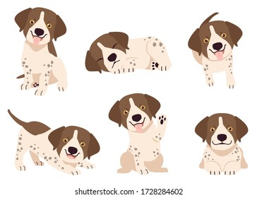 The collection of German Shorthaired Pointer in many action. Graphic resource about set of dogs German Shorthaired Pointer for graphic, content, etc.