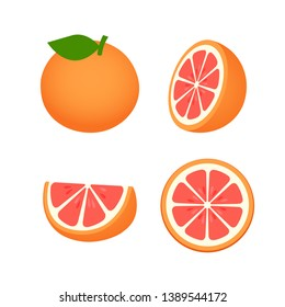 collection of Grapefruit, fruit pattern vector illustration sketch isolated on white background