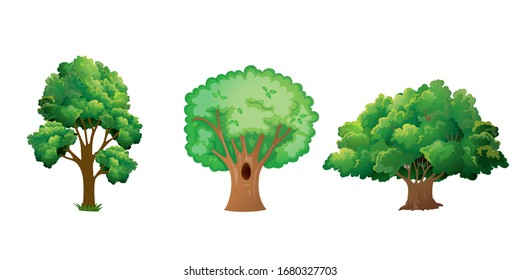 Collection of Green tree cartoon style vector illustration. Can be used to your design or healthy lifestyle topic.