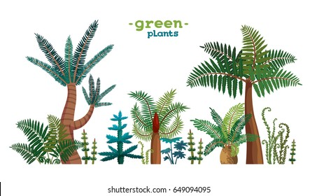 Collection of green tropical plants on a white background. Vector nature illustration.