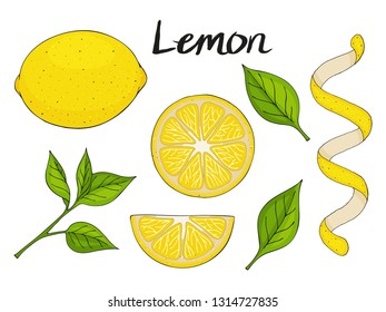 Collection of hand drawn elements, yellow lemon, green leaves and slice. Objects for packaging, advertisements. Isolated image. Vector illustration.