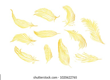 Collection of hand drawn feather. Isolated on white background. Set of decorative animals birds feathers. Hand drawn vector art. Brush pen golden ink illustration.