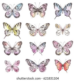 Collection of Hand Drawn silhouette butterflies with watercolor texture. Vector illustration in vintage style.