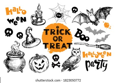Collection of hand drawn sketch illustration for the day of Halloween. Owl, bat and lettering treat or treat, halloween party on white background