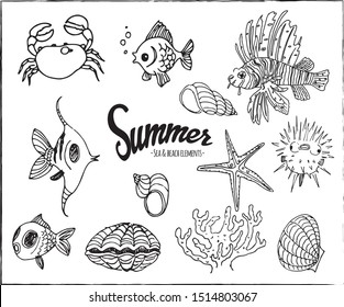 Collection of hand drawn summer sea and beach elements