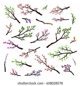 Collection of hand drawn tree branches, twigs with leaves, berries, buds and flowers isolated on white background.