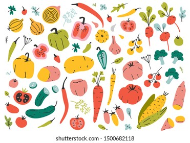Collection of hand drawn vegetable illustrations isolated on white background. Bundle of fresh delicious vegan diet vegetarian products, wholesome healthy food, cooking ingredients. Flat cartoon style