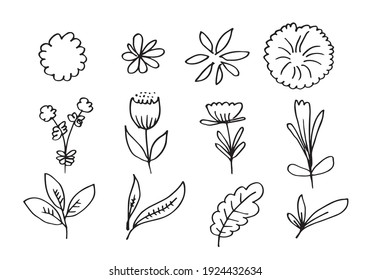 a collection of hand-drawn flower images such as bellflower, chrysanthemums, sunflowers, cotton flowers, and tropical leaves