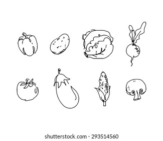 Collection Of Hand-Drawn Vegetables . Vector Icon Set On White