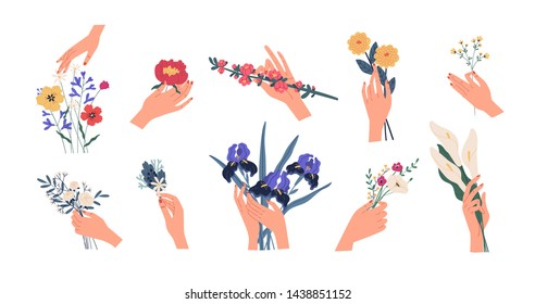 Collection of hands holding bouquets or bunches of blooming flowers. Bundle of floral decorative design elements isolated on white background. Set of elegant summer gifts. Flat vector illustration.