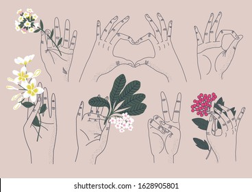 Collection of hands holding bouquets or bunches of blooming flowers, concept of harmony, love, peace symbols. Set of elegant summer gifts. Flat vector illustration.