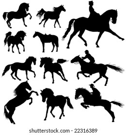Collection of horses part 4.