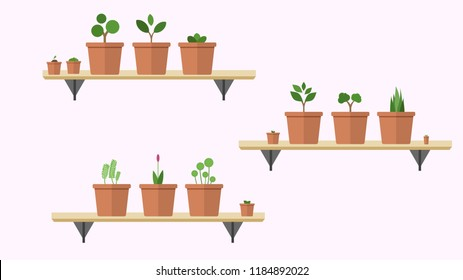 Collection of indoor house plants and flowers in pots. vector illustration