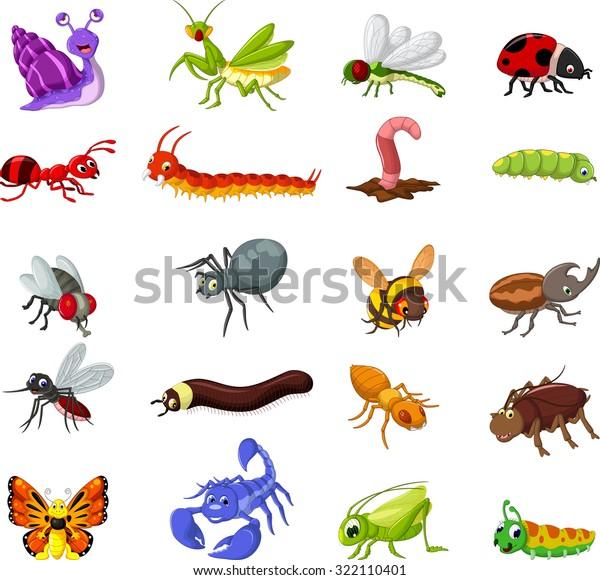 collection de dessins animés d'insectes pour : image vectorielle ...