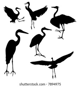Collection of isolated Great Blue Heron silhouette designs in AI-EPS8 format.