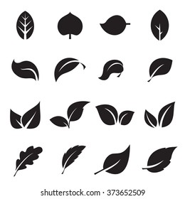Collection of leaf icons. Black icons isolated on a white background. Vector illustration
