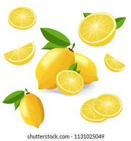 Collection of lemon fruits isolated on white. Lemon icon set vector illustration
