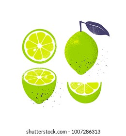 Collection of limes, isolated on white background. Slices and whole fruit with a leaf. Vector illustration.