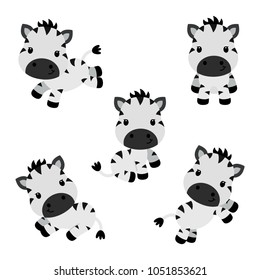 Collection of little funny zebras. Children vector illustration isolated on white background.