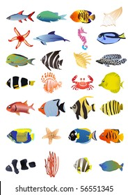 Collection of marine animals, vector illustration