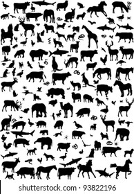 collection of mix animals silhouette - vector