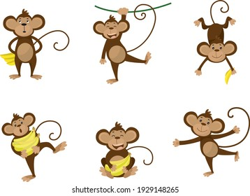Collection of monkey in different poses with banana
