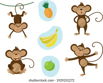 Collection of monkey in different poses with banana, apple and pineapple